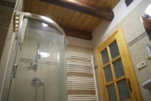 Sprchový kout s malou vaničkou, kde pohodlně vykoupete malé děti.